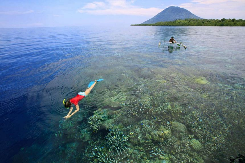 Sulawesi has stunning snorkelling and dive sites.