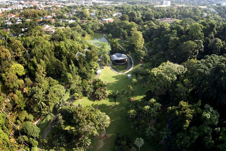 An aerial view of the Singapore Botanic Gardens, which has two outstanding universal values: a historic role in the rubber trade which transformed the region in the 1900s, and a unique tropical colonial gardens landscape.