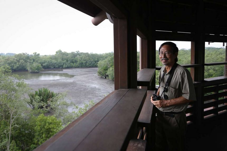 Nature Society's Dr Ho Hua Chew says the Government's willingness to preserve Pulau Ubin as well as build public shelters and trails at Kranji Marshes for better access are encouraging signs for nature conservation.