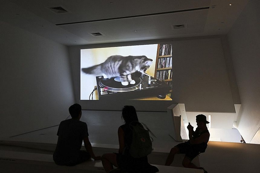 Vinyl Cat (2012, above) by Corbo. Images (left), videos and GIFs are part of the ongoing exhibition, How Cats Took Over The Internet, at the Museum of the Moving Image in New York.