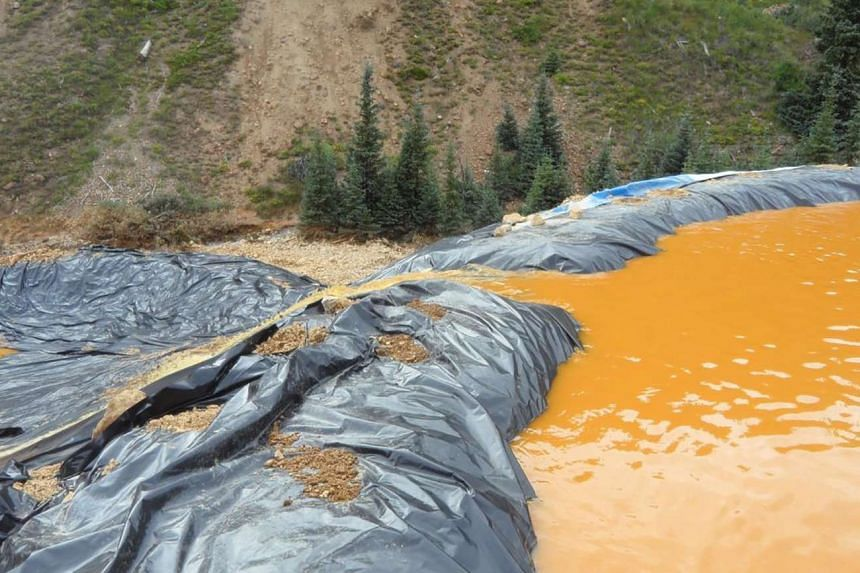 Yellow mine waste water from the Gold King Mine collects in a holding pool in San Juan County, Colorado on Aug 7, 2015.