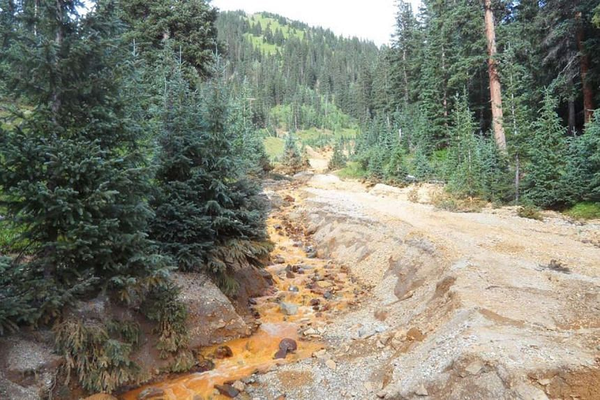 Yellow mine waste water from the Gold King Mine is seen in San Juan County, Colorado on Aug 7, 2015.