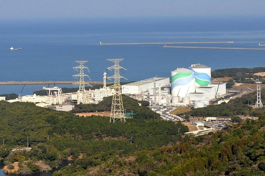 An undated picture provided by Kyushu Electric Power Company on Aug 10, 2015 shows the Sendai Nuclear Power Plant in Satsumasendai, Kagoshima Prefecture, south-western Japan.
