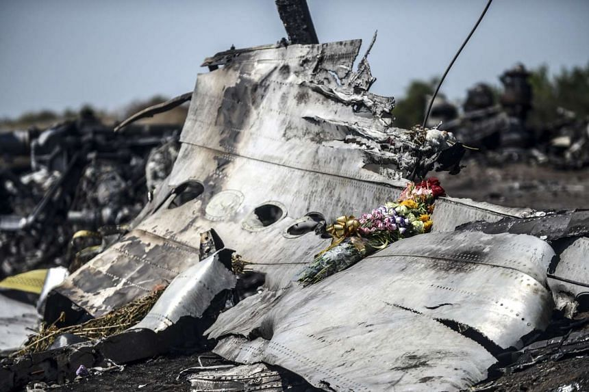 """Investigators have identified pieces that """"possibly"""" come from a Russian-made BUK missile in the wreckage of Malaysia Airlines flight MH17 (above)."""