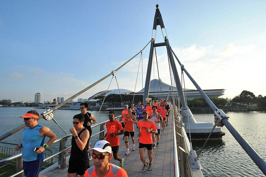 About 80 runners took part yesterday in the first training run for the 18.45km category of the Straits Times Run at the Hub, which will be held on Sept 27. They ran about 8km around the Kallang Sports Hub area, led by the event's official pacers from