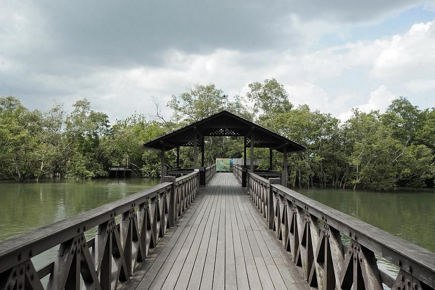 A 45-year-old man was arrested yesterday for allegedly trying to enter Singapore illegally through Sungei Buloh Wetland Reserve.