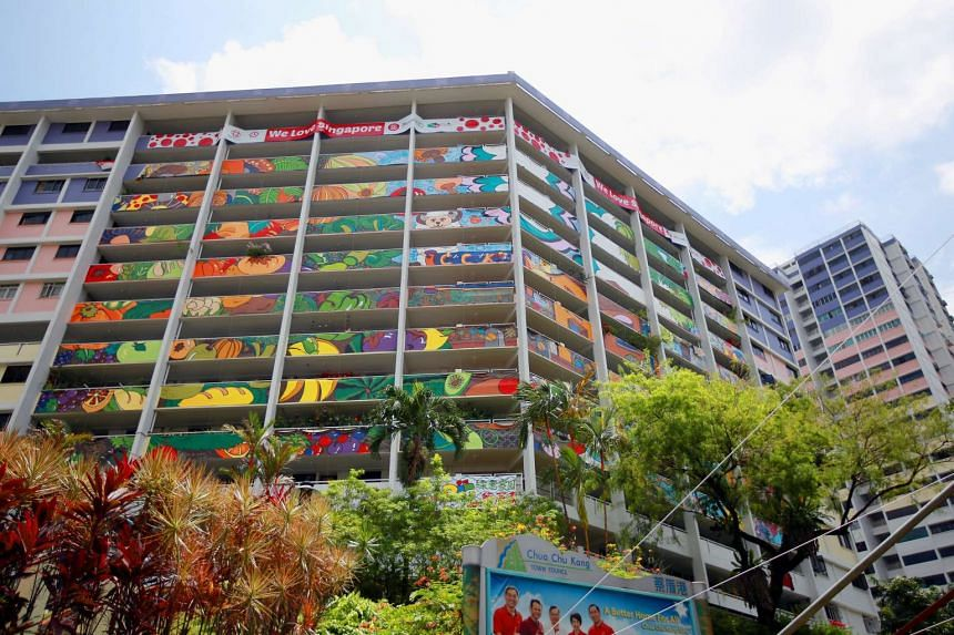 The art facade on Block 26 Teck Whye Lane, which was done up by residents as part of the PAssionarts Festival celebration.