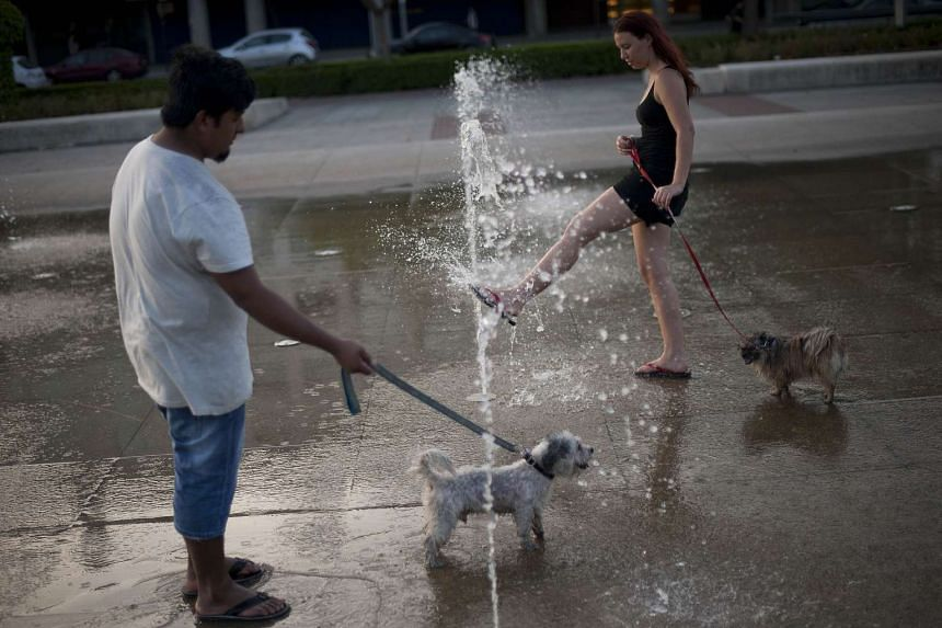 A couple and their dogs cool off in a foutain in Spain on July 7.