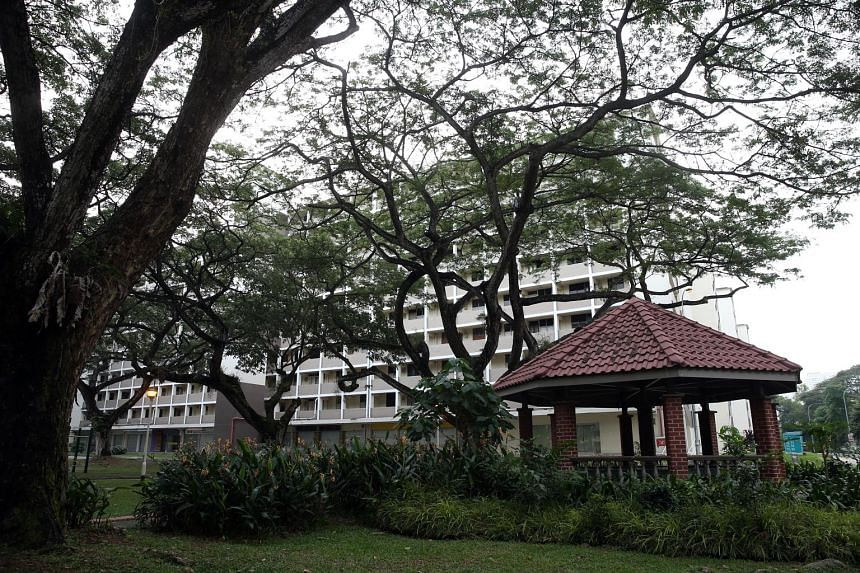 The old estate at Tanglin Halt, comprising seven housing blocks, has been vacant since late 2013 and is slated for redevelopment later this year. The writer's family lived there for many years, part of a close-knit community. For him and his childhoo