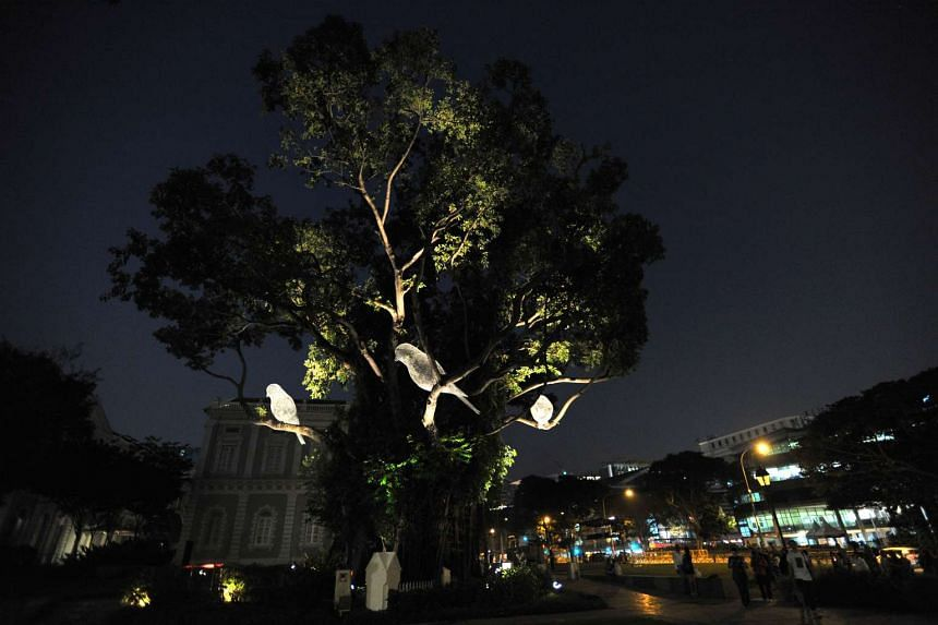 "Nocturnal ""birds"" light up the banyan tree in front of the National Museum."