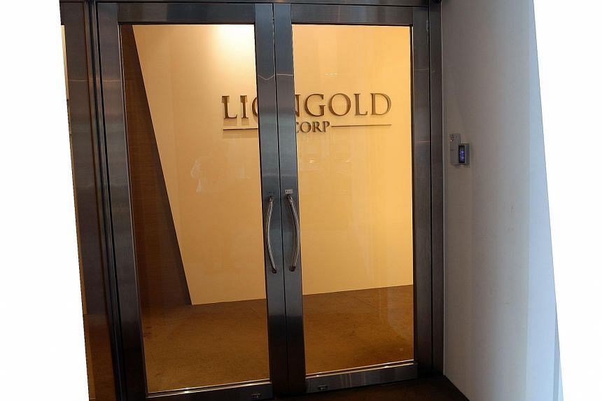 LionGold was one of three small firms which set off a penny stock meltdown in October 2013.