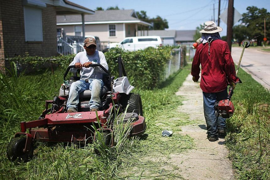 Workers clear an overgrown lot in the Lower Ninth Ward on Aug 24, 2015 in New Orleans, Louisiana.