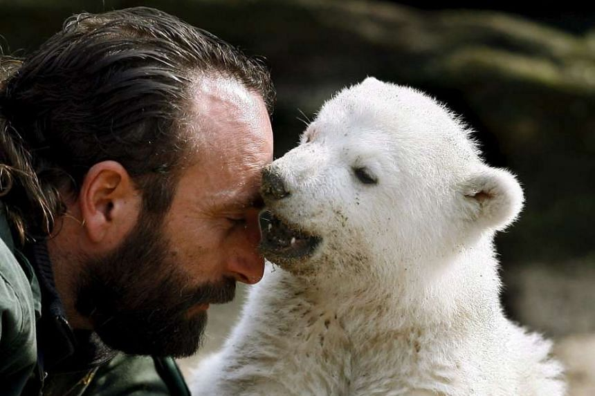 A file photo shows Knut with foster father Thomas Doerflein.
