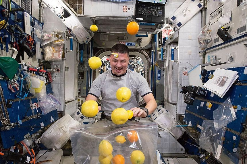 Simple everyday tasks take a little more effort without the help of gravity. Here, Nasa astronaut Kjell Lindgren makes a game out of it as he corrals the supply of fresh fruit that arrived on Tuesday on the Kounotori 5 H-II Transfer Vehicle. Visiting