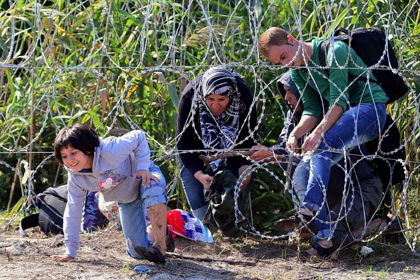 A child of a migrant family creeps under the barbed fence near the village of Roszke on the Hungarian-Serbian border on Aug 28, 2015.