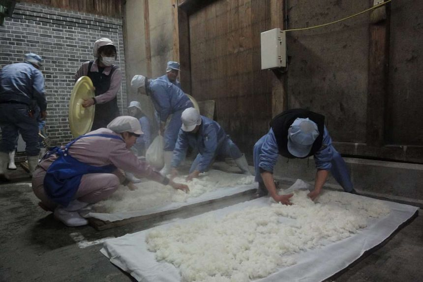 Workers spreading out the steamed rice to cool.