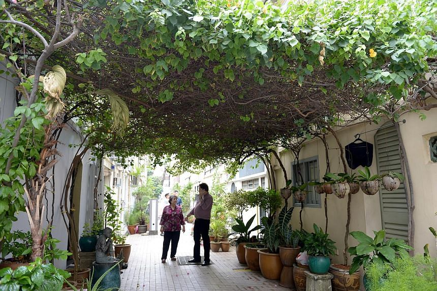 """Dr Richard Helfer, vice-president of the Emerald Hill Conservation Association, with retired engineer June Chia, 62, who lives in the neighbourhood. The association counts among its accomplishments the elimination of a stretch of 400 """"unsightly bins"""""""