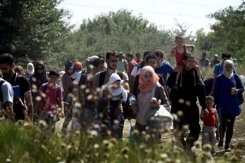 Syrian Refugees and migrants walk across a field as they head from Gevgelija in Macedonia to the Serbian border on Aug 30, 2015.