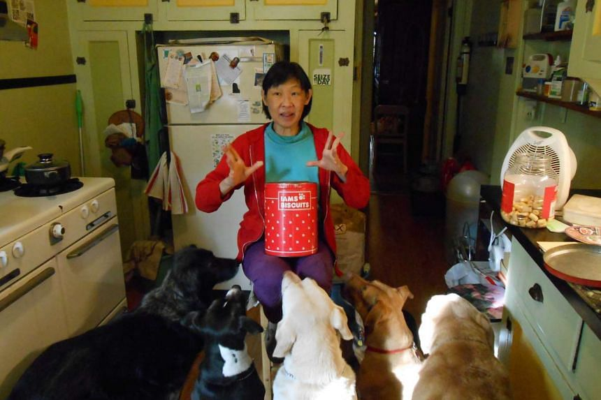 Tan at home in Brooklyn last year with five of her dogs.