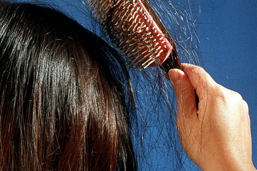Alopecia totalis usually starts with small patches of hair loss.