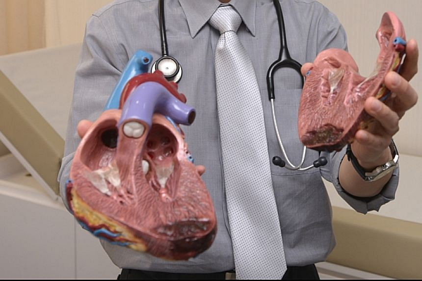 A cardiologist at The Heart and Vascular Centre at Mount Elizabeth Hospital, with model of a heart.