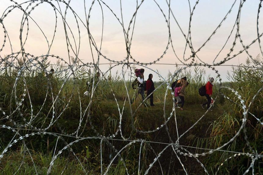 Illegal migrants seen through razor wire fencing as they walk at the border between Serbia and Hungary, near Roszke, 180 kms southeast from Budapest, Hungary, on Aug 30, 2015.