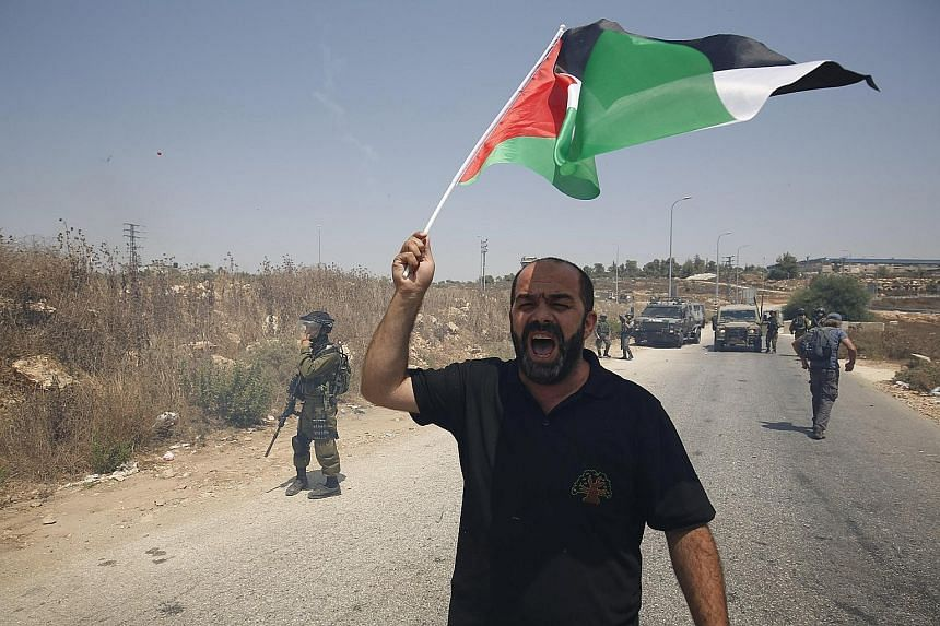 A protester brandishing a Palestinian flag during a demonstration against Jewish settlements in the West Bank village of Nabi Saleh, near Ramallah. Palestine's hopes of having its flag raised at the United Nations is an event that highlights its peop