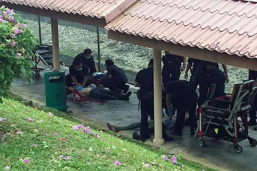The victim was found lying motionless at a walkway near Ang Mo Kio MRT station on Friday morning. A 10m trail of blood was seen along the walkway, which links the station to Cheng San Community Club.