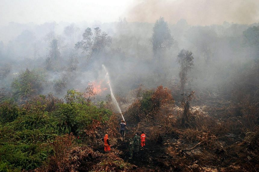 Indonesian firefighters and military personnel extinguish a wildfire on peat land in Rimbo Panjang, Kampar, in Riau province on Sept 6, 2015.