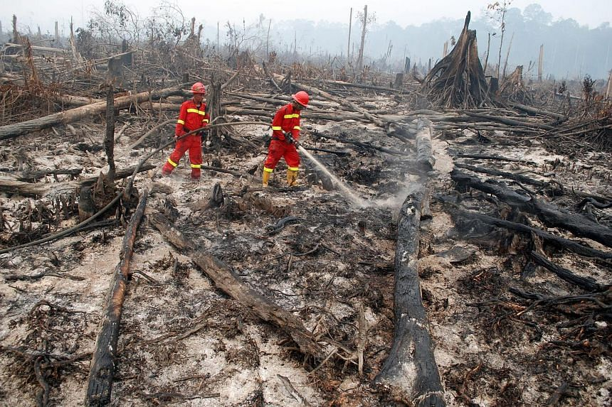 Firefighters putting out a fire in Riau province. Indonesia is struggling to fight forest fires in Sumatra and Kalimantan.