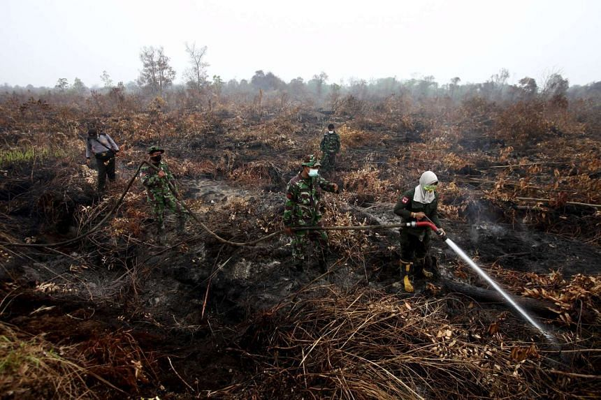 A firefighter from the Indonesian Ministry of Forestry, assisted by soldiers, sprays water on burning peatland forest at Parit Indah Village in Kampar, in Indonesia's Riau province, on Sept 9, 2015.