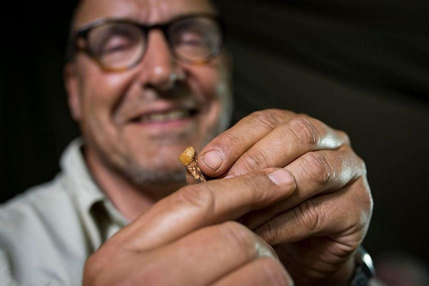 Professor Peter Schmidt pictured with parts of the skeleton of the homo Naledi in the Wits bone vault at the Evolutionary Studies Institute at the University of the Witwatersrand, Johannesburg, on Sept 7, 2015.