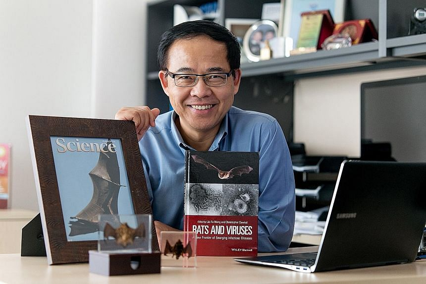 Prof Wang Linfa, director of the emerging infectious diseases programme at Duke-NUS, believes the book he co-edited that was released last week, on bats and their role in the transmission of viruses, is a key milestone since a similar one on this top