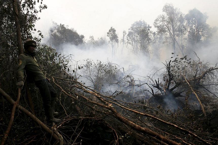 A worker takes a break from extinguishing fire at a burning forest at the Pulo Geronggang village in Ogan Komering Ilir district in Indonesia South Sumatra province on Sept 11, 2015.