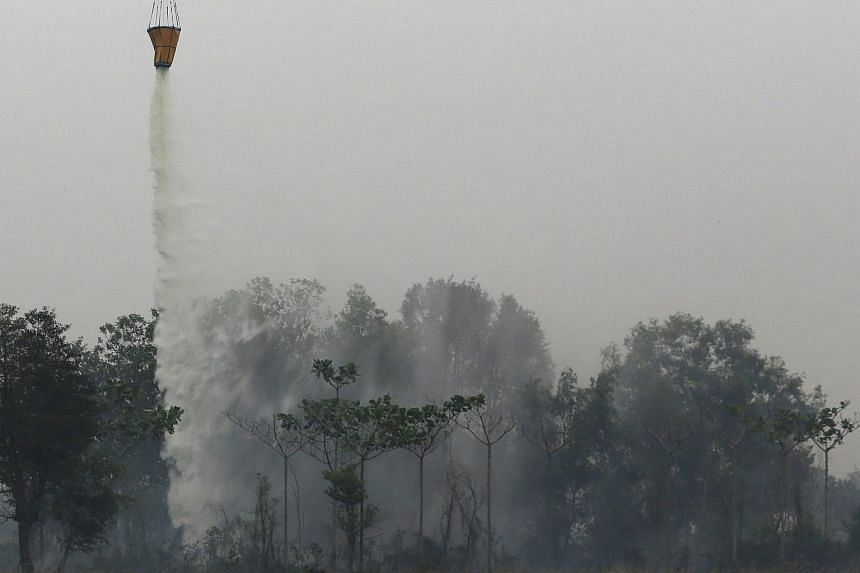 A helicopter dumps water on a burning forest at Indralaya village in Ogan Ilir regency in Indonesia's south Sumatra province on Sept 13, 2015.