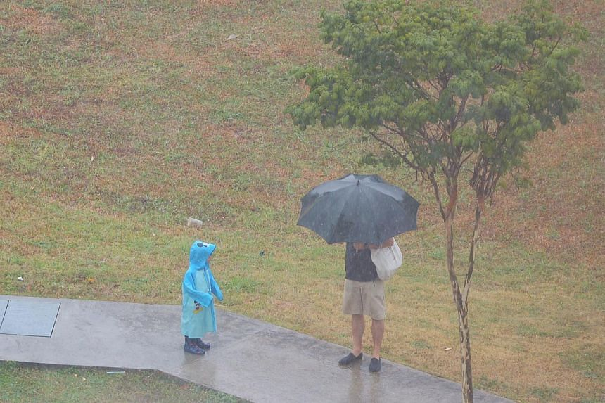 Raincoat and umbrella to shield from the heavy rain at the junction of Cassia Link and Jalan Satu.