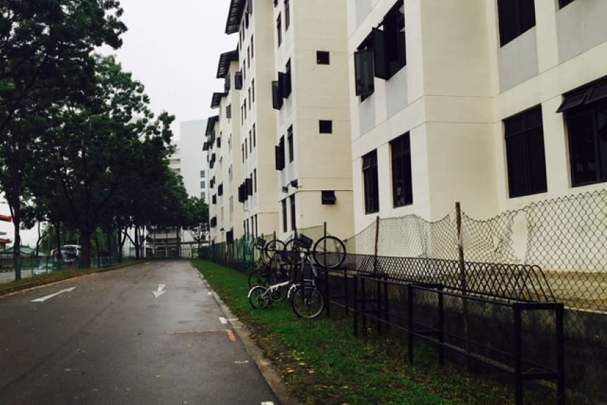 The bodies of two cats were found mutilated at the bottom of this dormitory block in Tampines on Tuesday, Sept 15, 2015.