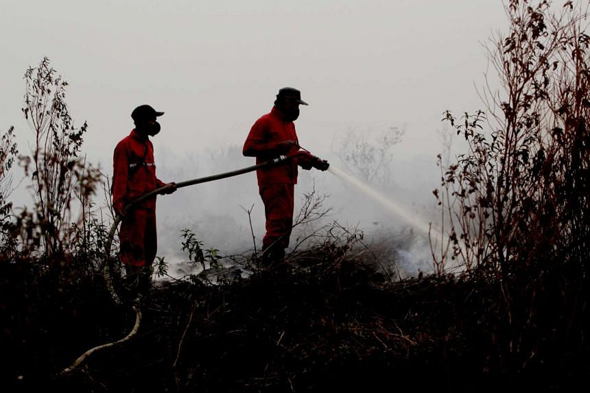 Indonesian firefighters work to extinguish a wildfire on peat land in the Reding area, in Ogan Komering Ilir, South Sumatra Province, Indonesia, on Sept 14, 2015.