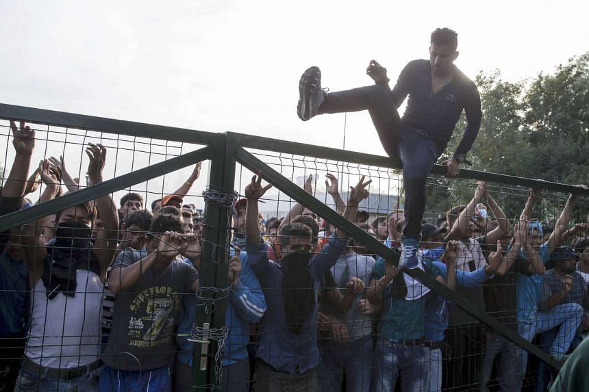 A migrant climbs a fence during clashes with Hungarian riot police at the border crossing with Serbia in Roszke, Hungary.