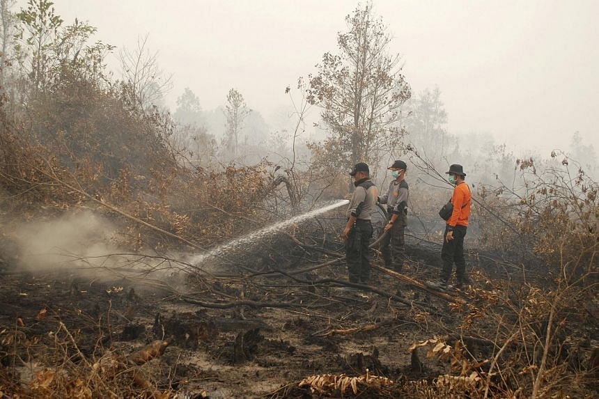 Indonesian police officers and volunteers trying to extinguish a fire in a peatland in Kampar, Riau province, Indonesia, on Sept 8, 2015.