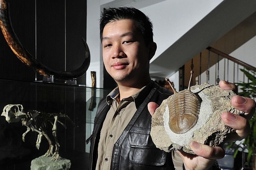 (From far left) Ms Ho Li Yah, Soh Zhi Bing and Mr Soh Kam Ying are a family united by their love for fossils. Avid collector Calvin Chu (above) keeps his collection of more than 1,000 fossils in a secret study behind three heavy bookcases in his home