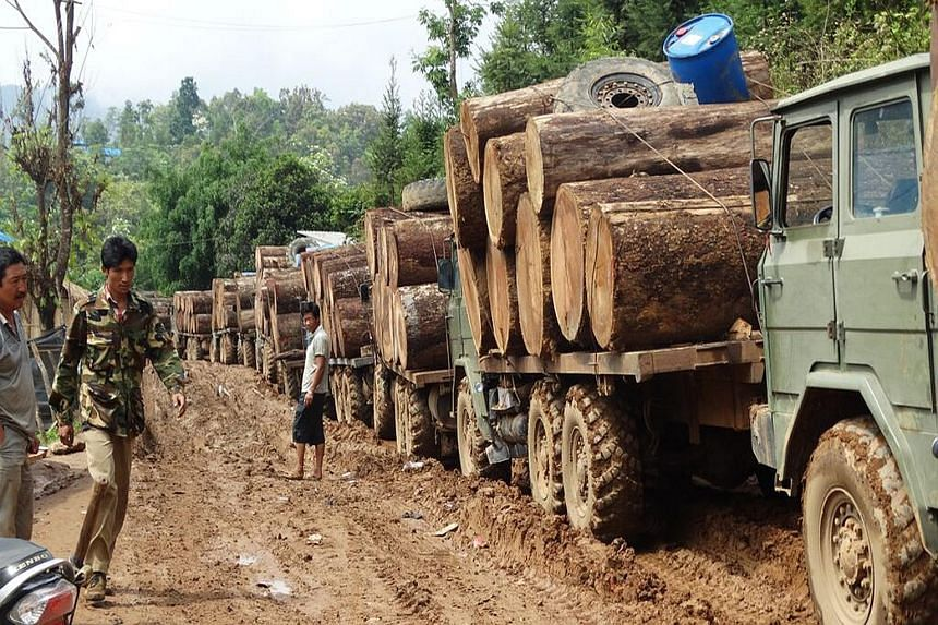 Trucks carrying timber at the Myanmar-China border. The Britain-based Environmental Investigation Agency says traders are decimating the forests of the restive Kachin state, in one of the largest cross-border illegal timber flows in the world amounti