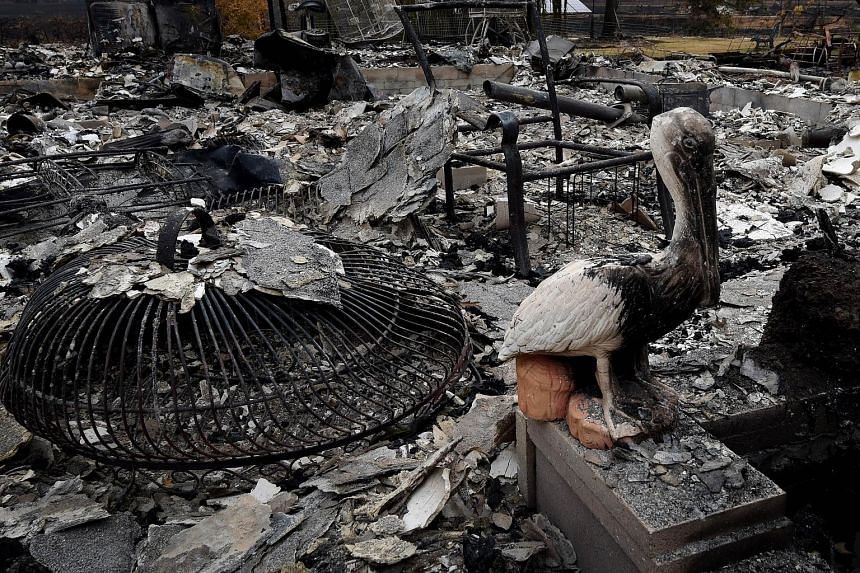 A burnt pelican statue stands among the charred remains of a house after the so-called Valley Fire swept through Middletown in California on Wednesday. The governor of California has declared a state of emergency as raging wildfires spread in the nor