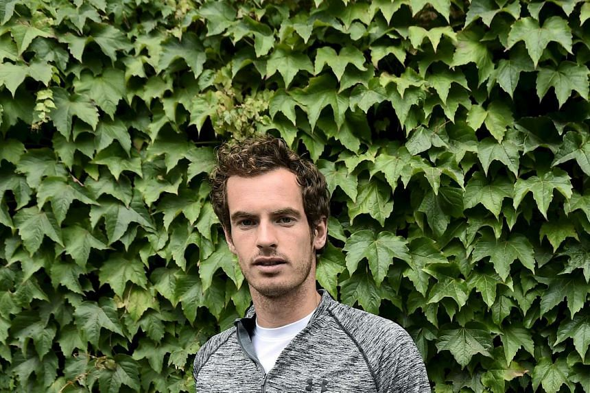 Former Wimbledon and US Open champion Murray (above) was moved by the plight of people travelling to Europe to claim asylum.