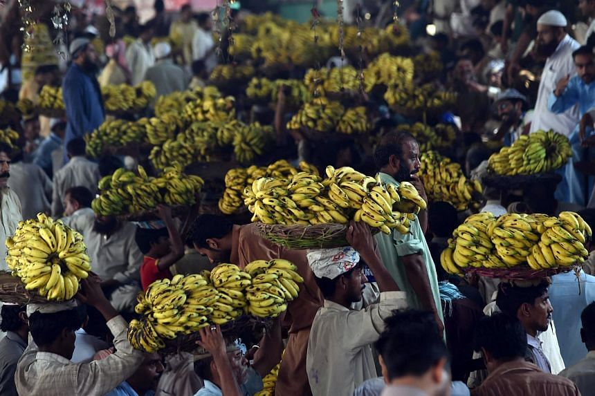 Pakistani labourers carry baskets of bananas at a fruit market in Lahore on Aug 27, 2015.