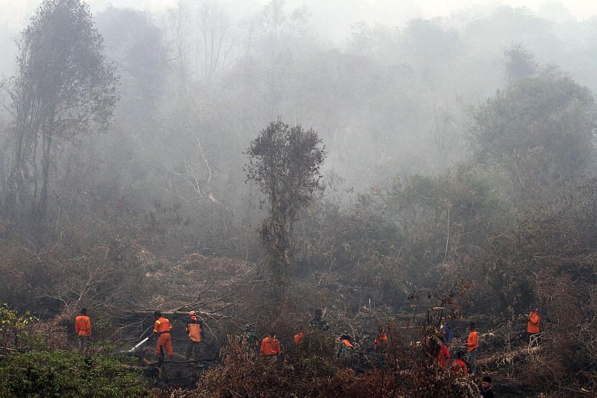 Indonesian fire fighters, rangers, soldiers and activists extinguish a fire in Kampar, Riau provinice on Sept 8, 2015.