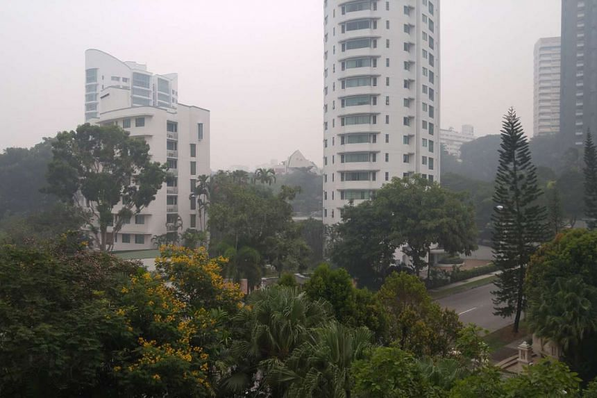The hazy conditions along Holland Road on Sept 24, 2015, at about 11am.