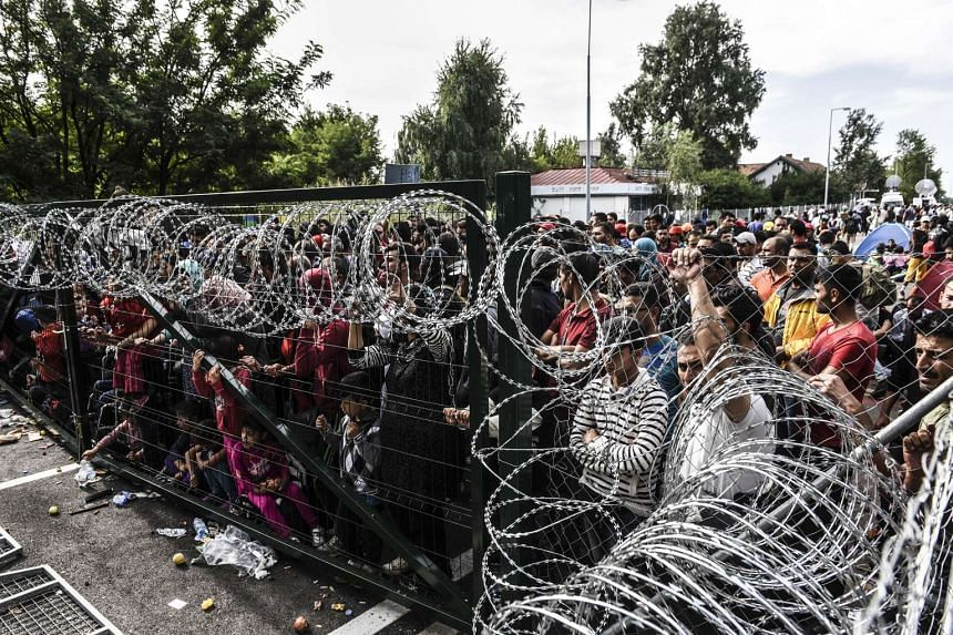 Germany estimates that 30 per cent of incoming migrants claiming to be citizens of war-torn Syria are in fact from other countries.