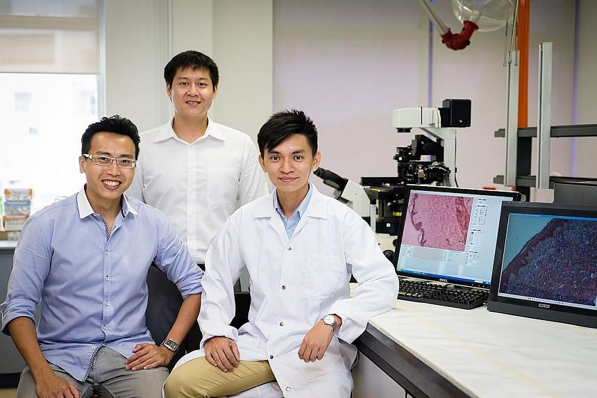 (From left) Mr Tan Ming Jie, Mr Daniel Tan and Dr Kelvin Chong - founders of DeNova Sciences - have grown skin models in plates from human skin cells. They believe the models offer a better alternative to animal testing when it comes to chemicals and