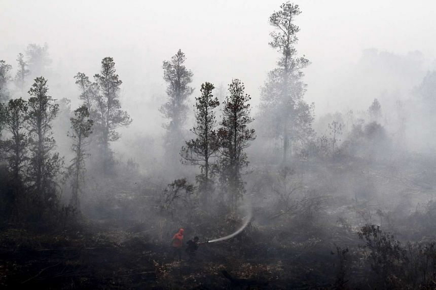 Indonesia said it would reduce deforestation, restore degraded forests, and lift the share of renewable energy to almost a quarter of the national energy mix in a decade.
